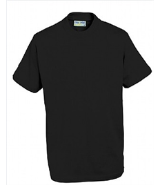 Adults T-Shirt - SHENTERPRISE MEMBERS ONLY