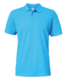 Ludlow College Polo
